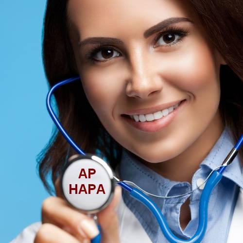 Animateur Prévention  AP HAPA